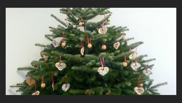 Ar pašdarinātām rotām vai lampiņām – padižojies 'Delfi Aculieciniekam' ar svētku egli!