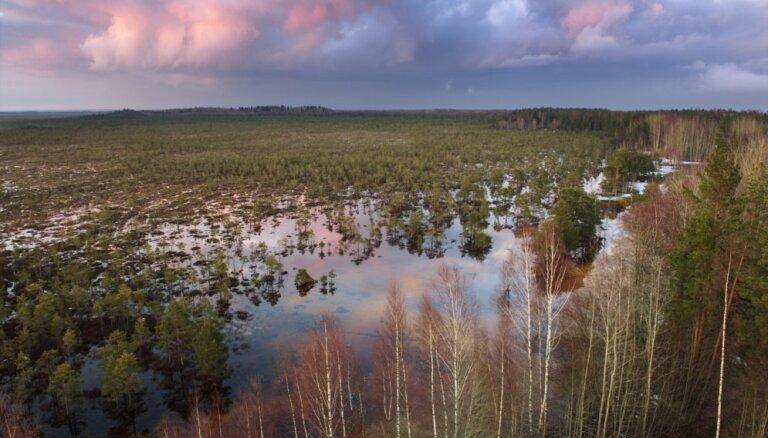 Teiču dabas rezervātam piešķir Eiropas neskarto dabas teritoriju atzinību