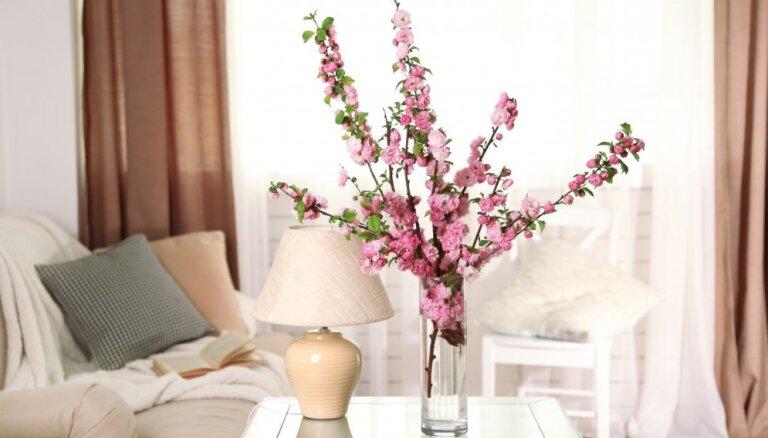 Sakuras ziedēšana interjerā: idejas rozā romantikai telpās