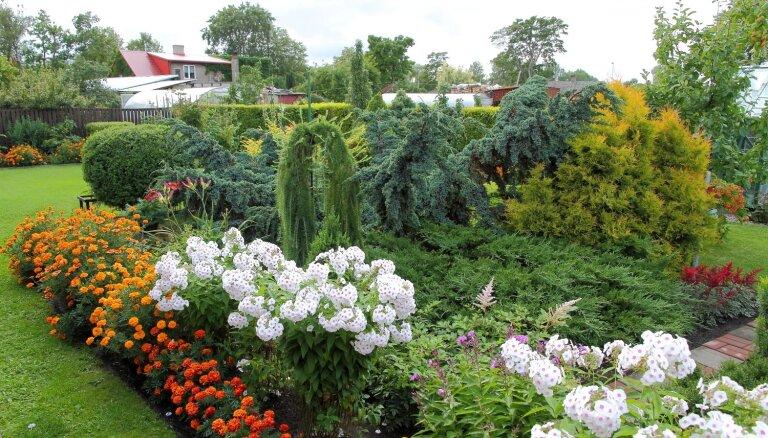 Foto: Trīs šīs vasaras skaistākie dārzi Ventspilī