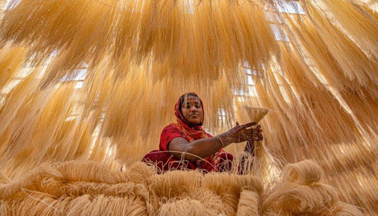 Dienas ceļojumu foto: Rīsu nūdeļu fabrika Bangladešā
