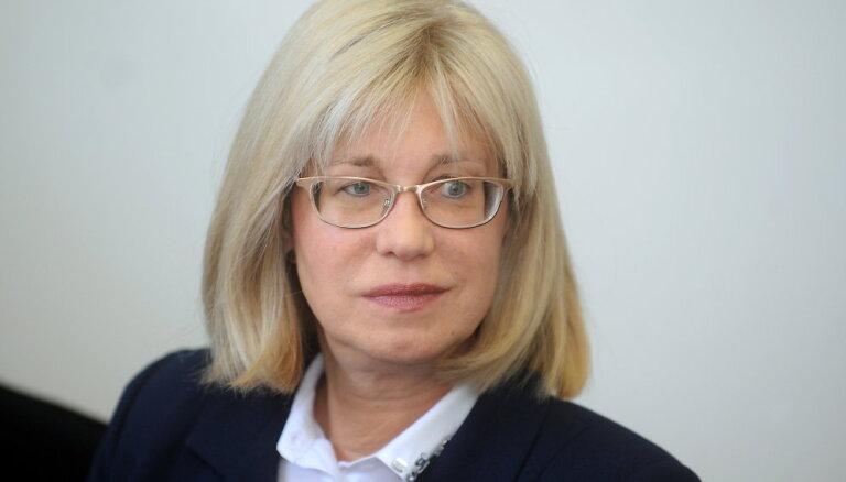 Tiesas lēmums apturēt Muižniekam nelabvēlīgo valdības lēmumu ir likumsakarīgs, norāda Druviete