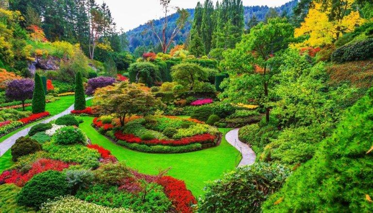 Vienas sievietes aizraušanās, kas pārtapusi pasakainā ziedu valstībā – Butčarta dārzs