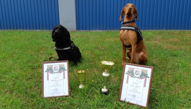 VID kinologi ar brašajiem suņiem uzvar vairākās starptautiskās sacensībās