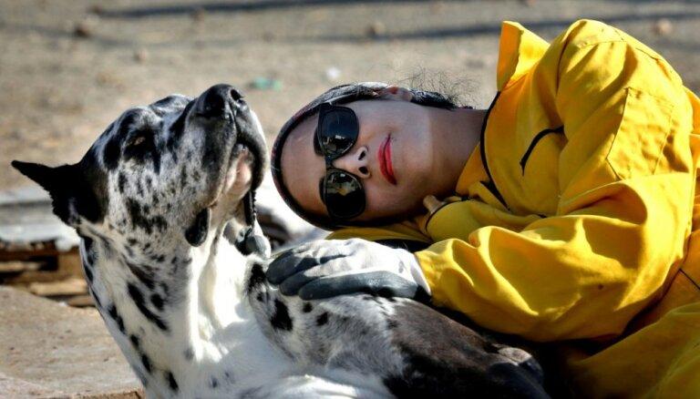 'Pagrimusī Rietumu kultūra': Teherānā aizliedz pastaigas ar suņiem