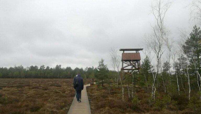 Lietuvas garākā purva laipa – tepat Latvijas pierobežā. Ideja vienas dienas izbraucienam