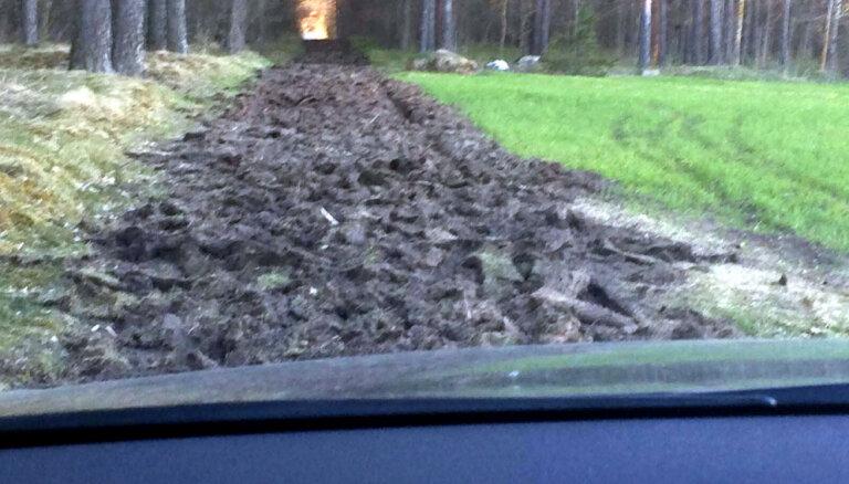Foto: Mārupieši neizpratnē, kādēļ izdangāts bieži lietotais meža ceļš