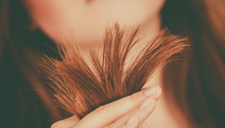 Sausu matu problēma: kāpēc tie kļūst bojāti un kā no tā izvairīties