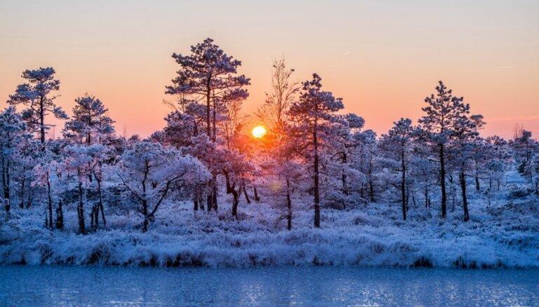 В субботу начнется новая волна похолодания: пойдет снег, к началу новой недели будет -10