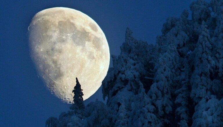 Рогозин ждет от Роскосмоса проектов по освоению Луны