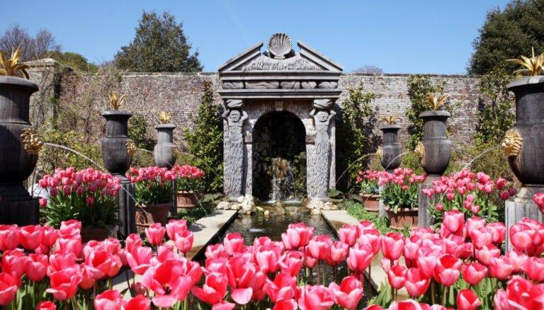 Strūklaku un vēsturiska šarma ielenkumā – Arundelas pils greznais dārzs