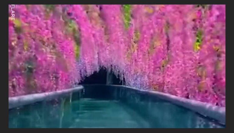 Ainavisks stikla slidkalniņš Ķīnā, kuru ieskauj ziedi
