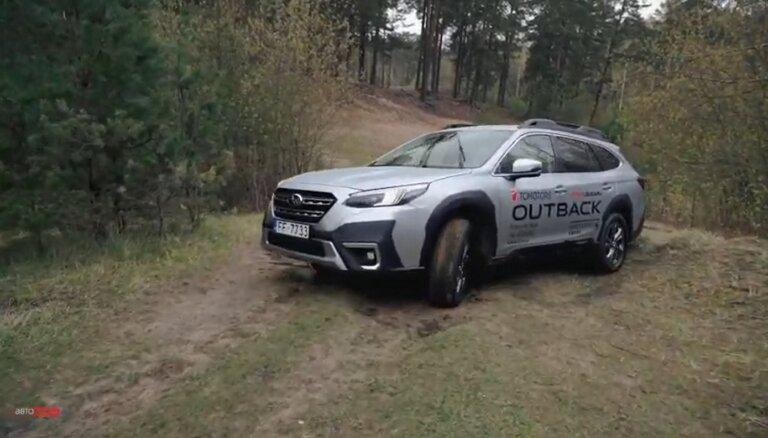 Subaru Outback: такой проходимости вы еще не видели (ВИДЕО)