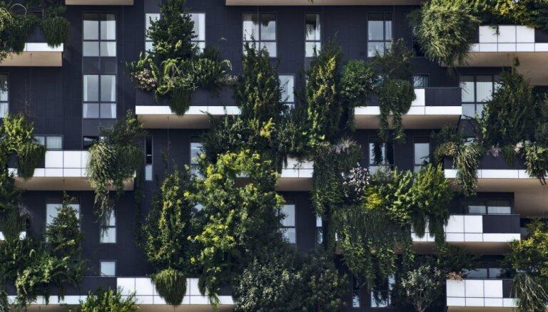 Džungļi pilsētā – zaļās mājas, kas priecē dabas draugus Milānā