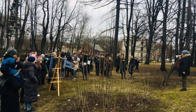 Pārdošanā izlikts cērtamajiem kokiem nosētais zemesgabals pie LU Botāniskā dārza