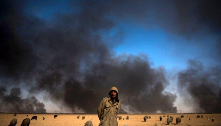 """Эксперты предсказали """"колоссальные изменения"""" на мировом рынке нефти"""