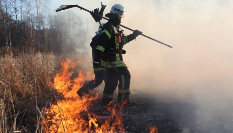 Под Елгавой сгорел сарай с котятами, местные жители говорят о пиромане