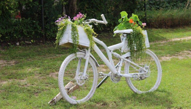 ФОТО: Творческие идеи для цветников, подсмотренные у латвийских садоводов