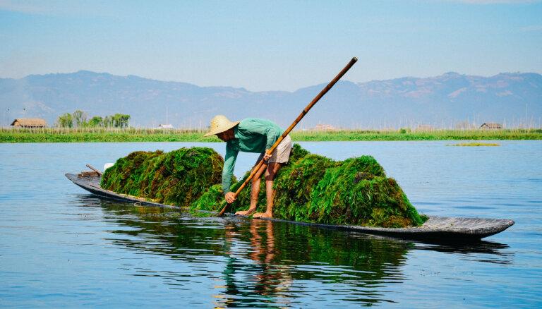 Melno zobu ciems, lustīgas bēres un patiesā dzīve: ceļojums uz Mjanmu