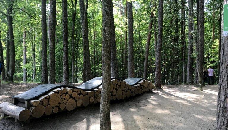 Baskāju taka un pastaiga kokos – Sajūtu parks Valmierā