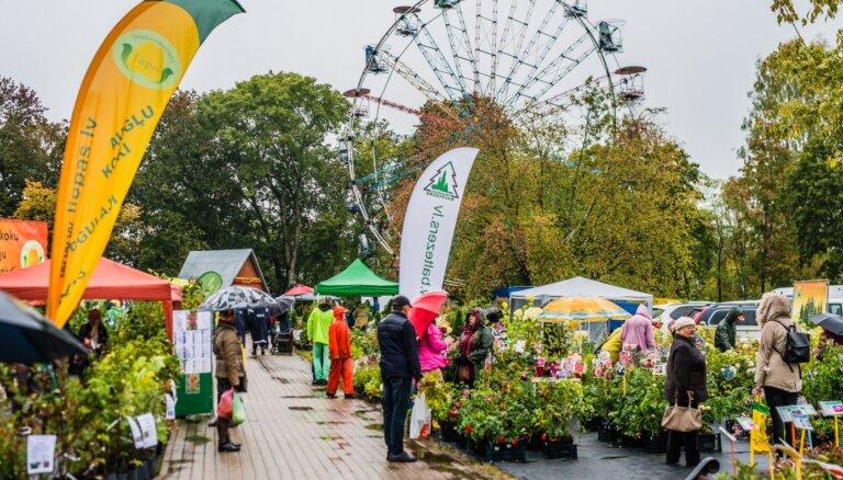 Традиционный Парад саженцев в Сигулде перенесен на 5-6 июня этого года