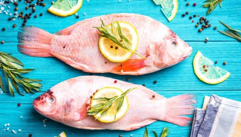 Lielais špikeris makšķerniekiem: 17 noderīgi zivju gatavošanas padomi vienuviet