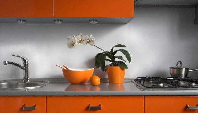Dzīvespriecīgo krāsu klātbūtne virtuves interjerā – kā panākt gaumīgu un neapnicīgu rezultātu?