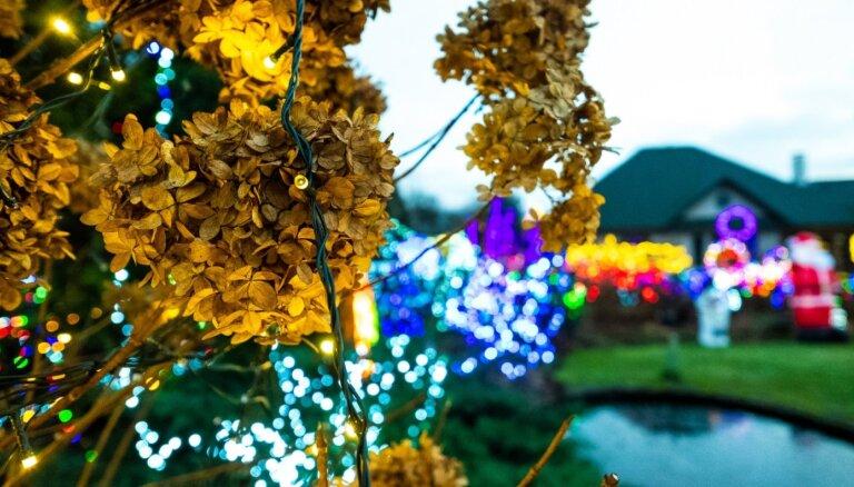 ФОТО. 30 тысяч лампочек и Гринч – знаменитый дом в Пардаугаве вновь украшен в честь праздников