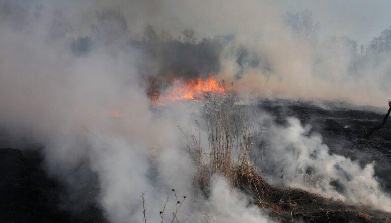 Ugunsgrēki plosās Latvijā: Olaines pagastā deg mežs, Rīgā pie Juglas ezera – niedres