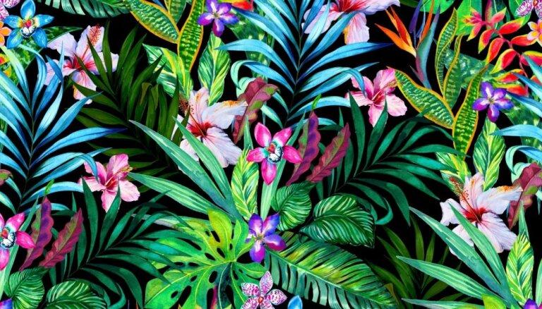 Ugunīgais Pērtiķis interjerā – žilbinošs spožums, džungļu motīvi un krāsainība