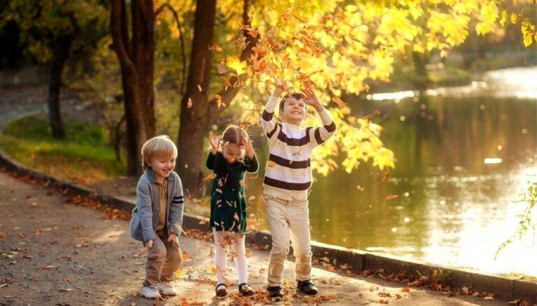 Золотая осень: 8 мест, куда можно поехать в Латвии вместо Сигулды