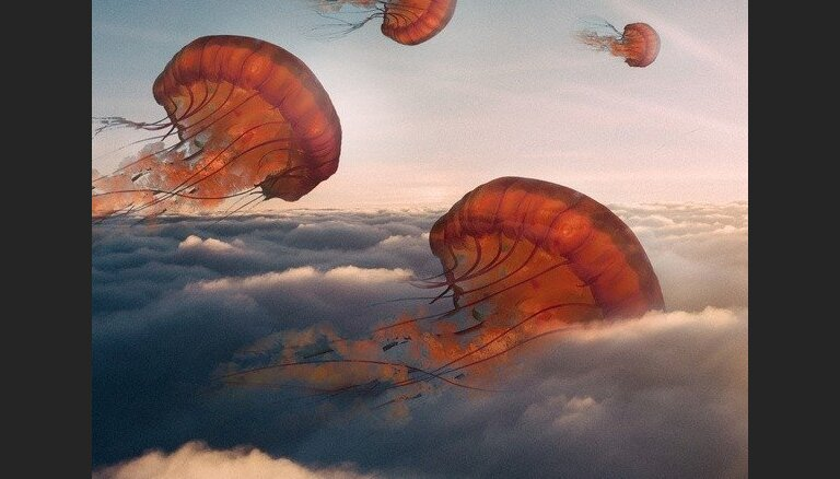 Foto: Vienradži un lidojošas medūzas - pasaku pasaule Teda Čina darbos