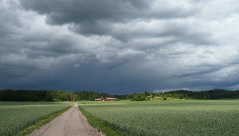 Прогнозы предупреждают о грозах с ливнями, сильным ветром и градом