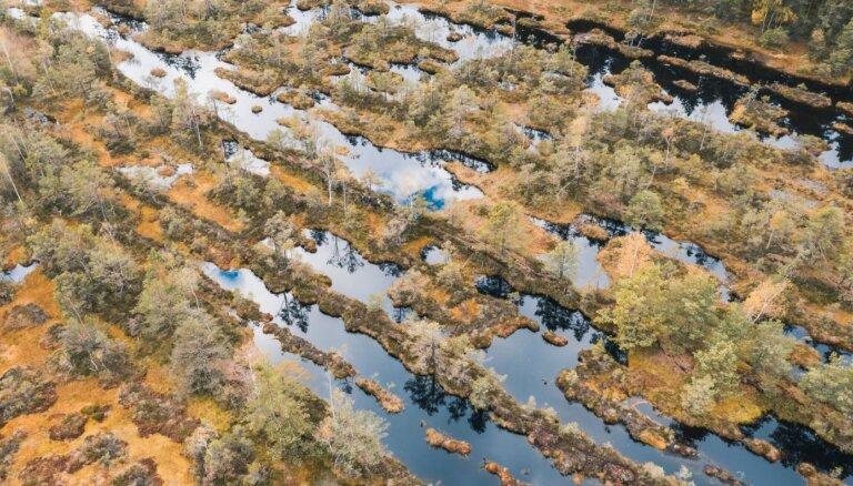 Konceptuāli atbalsta Zeltiņu purva dabas parka izveidi
