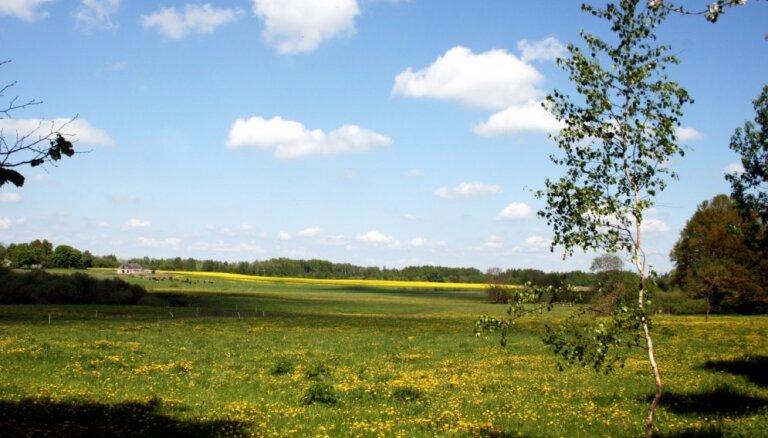 Aicina doties pārgājienā, iepazīstot Ziemeļgaujas parkveida pļavas un dižkokuks