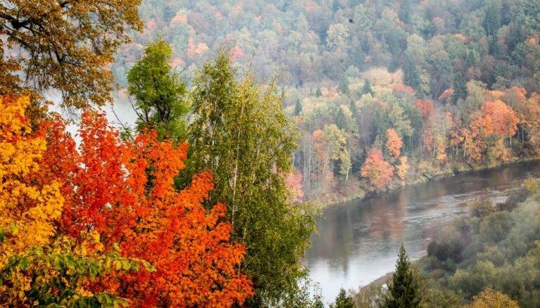 ФОТО. Осенняя классика: Сигулда в разноцветном наряде