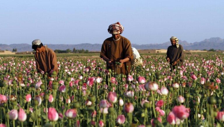 Несметные сокровища Афганистана. Кому достанутся медь, золото и литий при талибах?