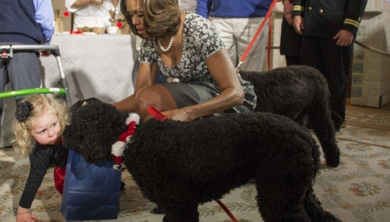 ASV pirmais suns sabiedē mazu meitēnu
