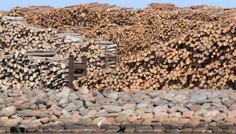 Meža produkcijas eksports pērn pieaudzis par 15,2%