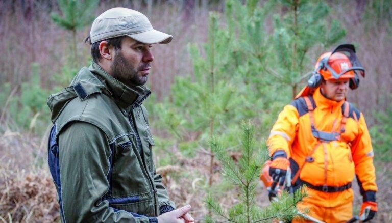 Mežkopības mācībstunda: kā izaudzēt kvalitatīvu un skaistu mežu