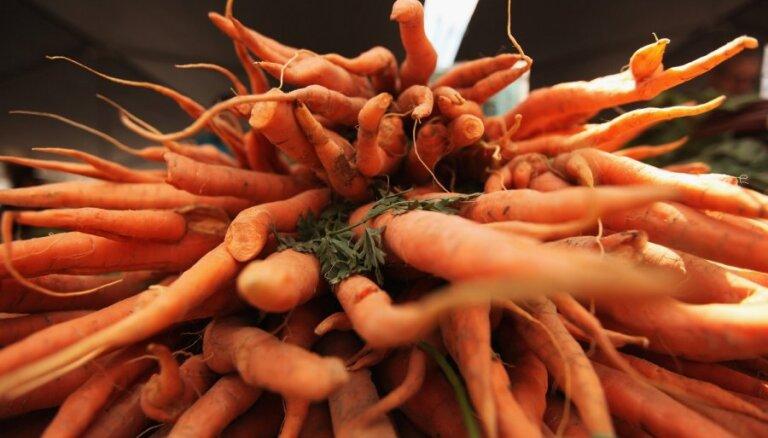 Kas vērtīgs kraukšķīgajos burkānos un kādus ēdienus no tiem pagatavot