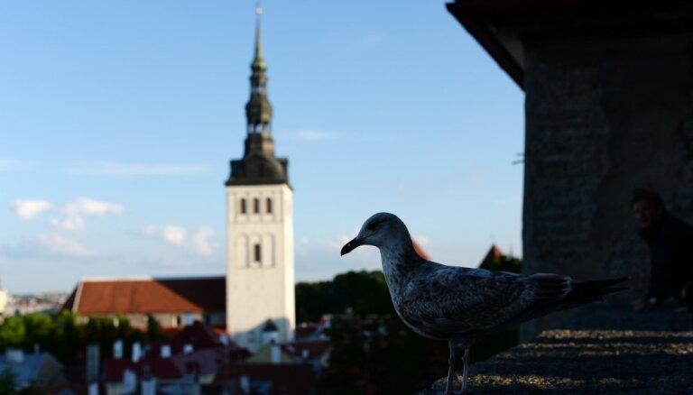 С 1 июля смягчаются требования к однодневным туристическим поездкам в Эстонию