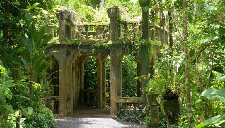 Paronellas parks – iespējams, neparastākā vieta Austrālijas džungļos