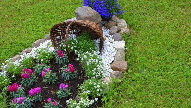 Ar radošu izdomu veidoti apstādījumi – Strenču novadā atzītākie dārzi