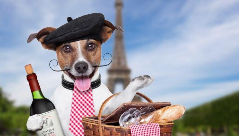 США могут повысить пошлины на товары из Франции