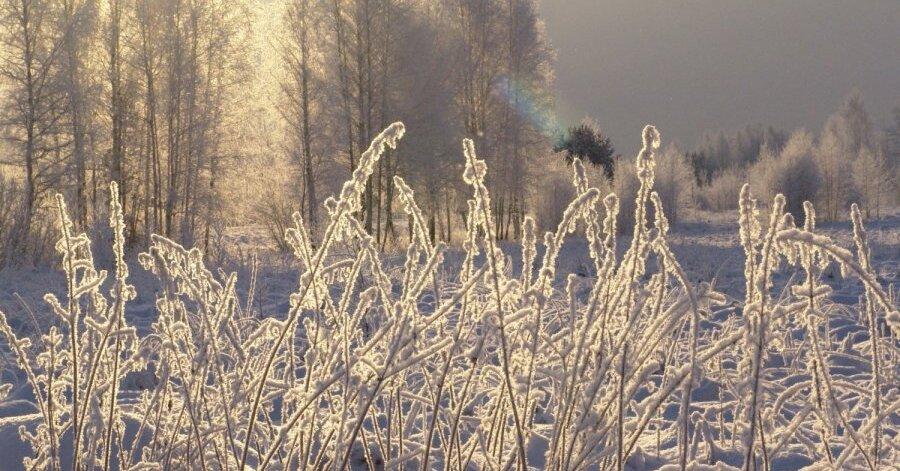 Тридцатиградусные морозы ожидаются на Урале