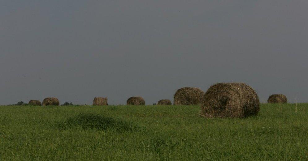 """Антициклон Yoann вытесняет дожди"": синоптик предупредила о перемене погоды"