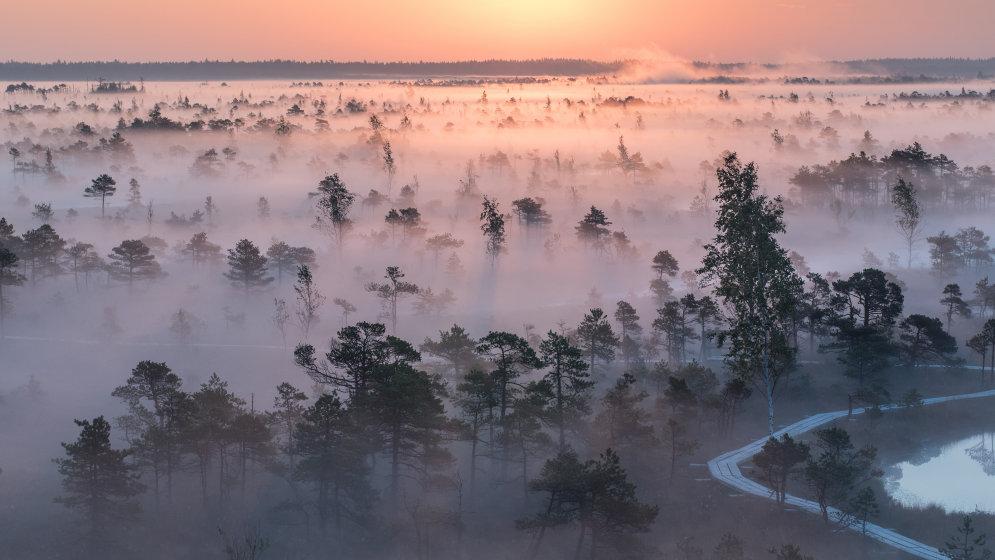 Смотри, в Латвию пришла осень! 10 идей для хорошей сезонной фотографии