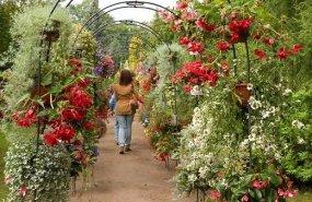 Botāniskais dārzs