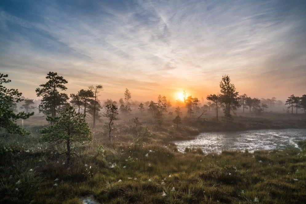 Ārvalstu mediji priecājas par skaistām bildēm no Ķemeru purva